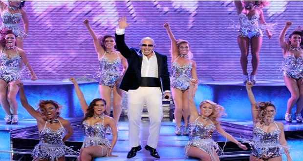 Pitbull remix rapelite