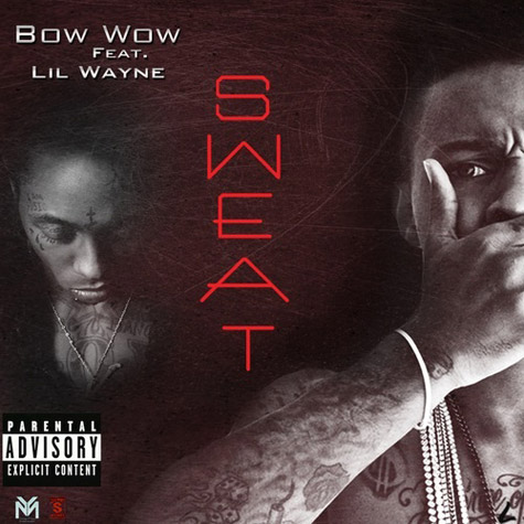 bow-wow-wayne-sweat