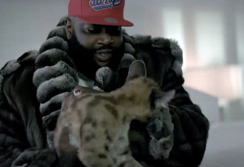rick-ross-cat