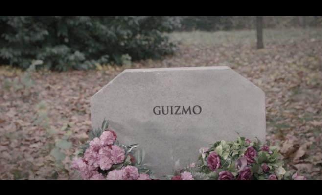 """Guizmo dévoile son nouveau clip """"Dans 10 ans"""""""